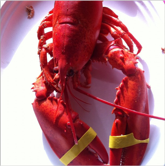 Lobster Bonart Recipe – Maine Lobster Fest Winner