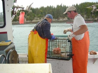An update on the fall lobster fishing season in Maine