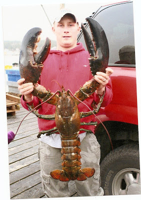 Huge Jumbo Maine Lobster
