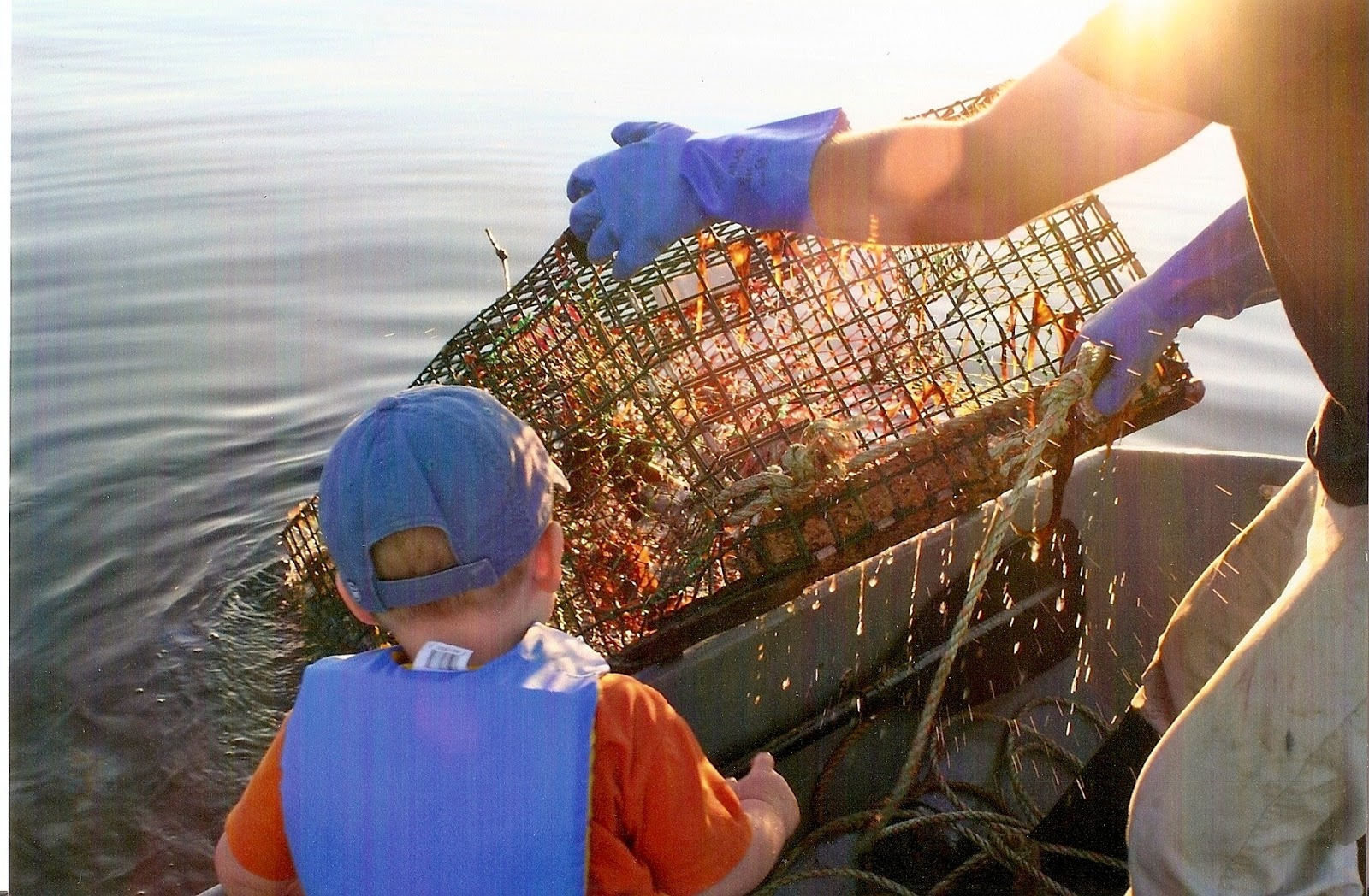 Maine Lobster Festival Article - Lobster Fishing Family Theme