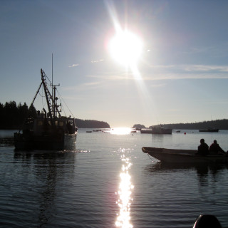 The 2009 Maine lobster fishing season – Start of the Season