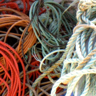 lobster fishing rope