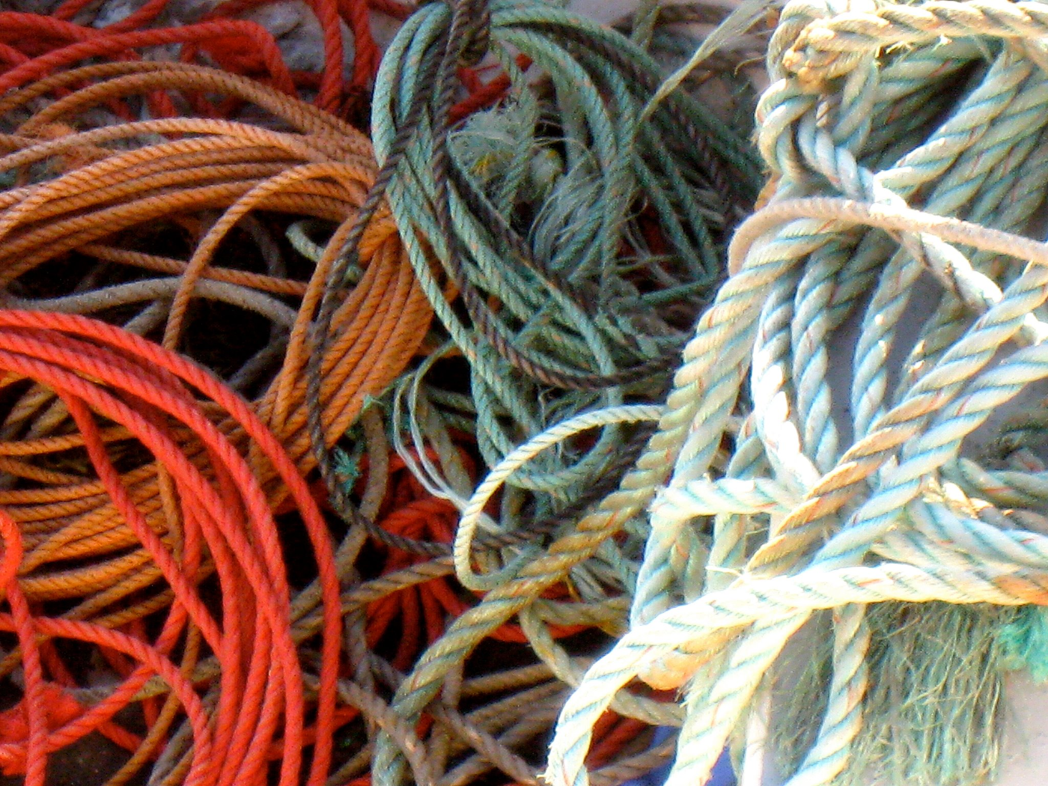 Lobster fishing rope. Photo courtesy of Billy Kitchen.