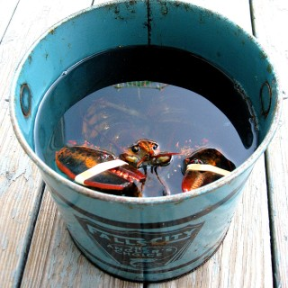 Cyber Monday Maine Lobster Deals