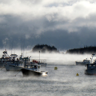 The 2008 Maine lobster fishing season – December Update