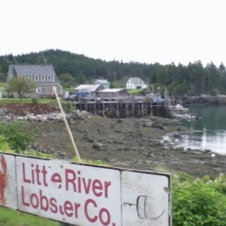 Lobster In Cutler Maine