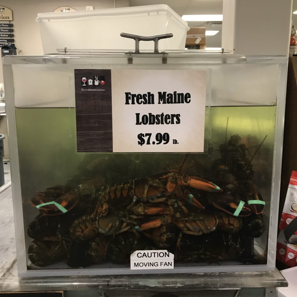 Price Lobster Maine August 2018