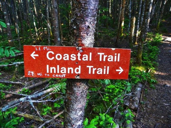 Cutler Maine Bold Coast Trail