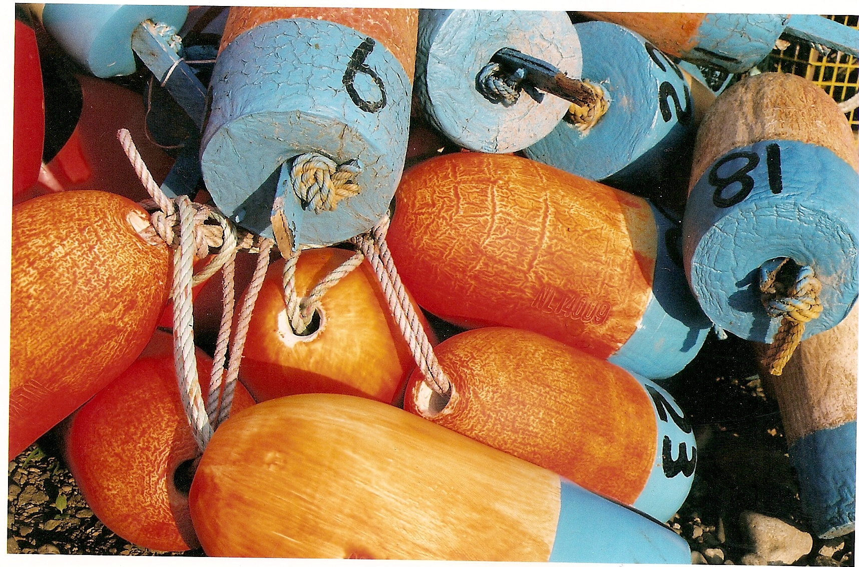 Maine lobster buoys