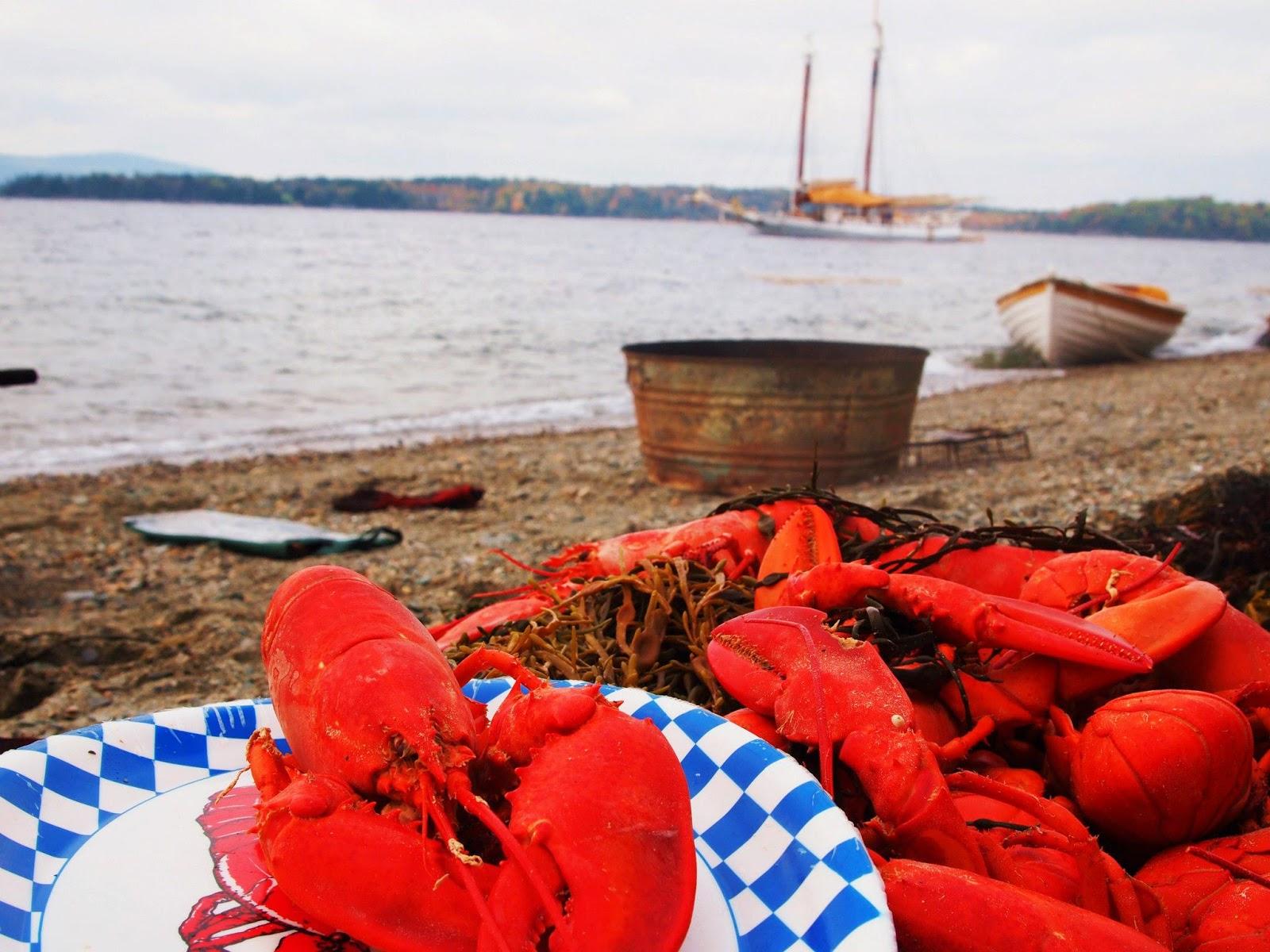 lobster bake maine beach