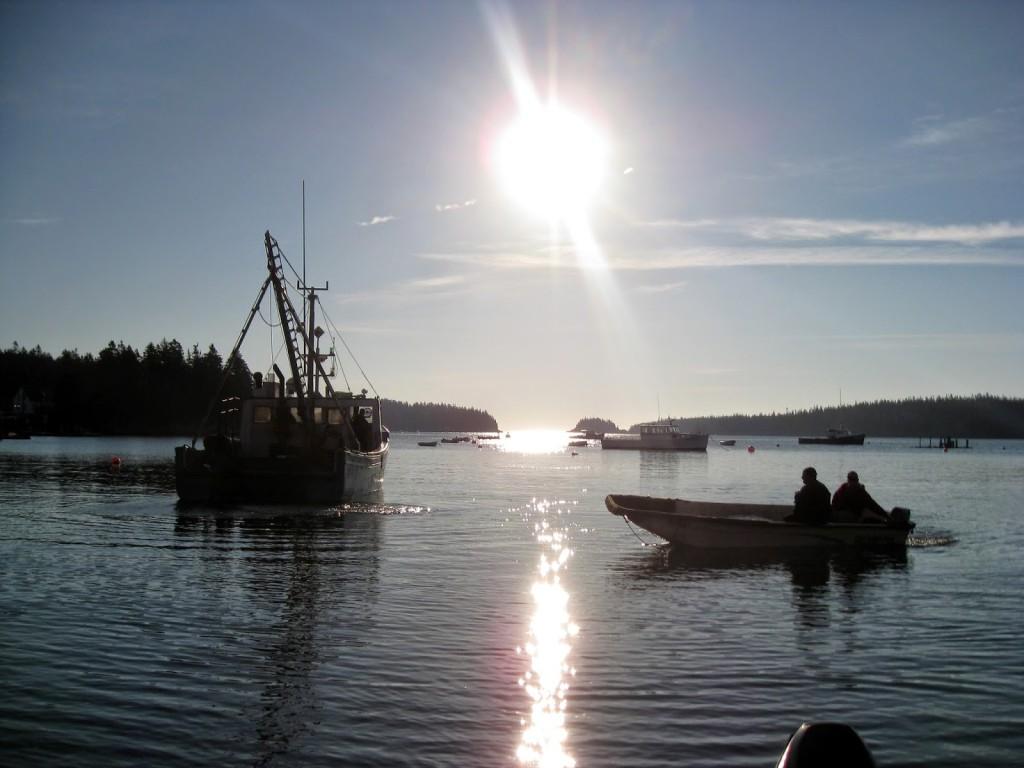 Cutler Harbor Sunrise Maine