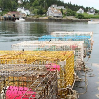 Maine lobster traps spring.