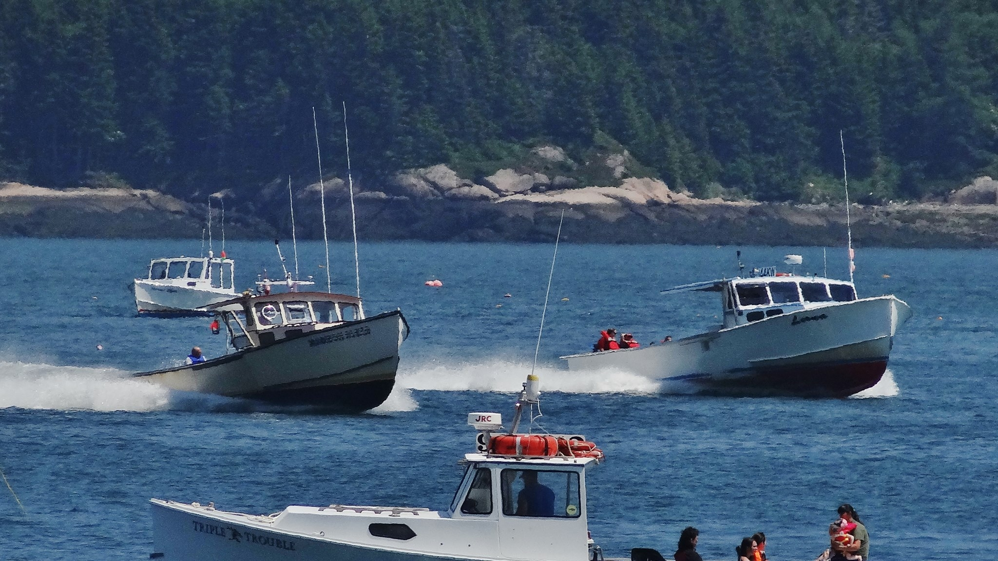 Moosabec lobster boat races